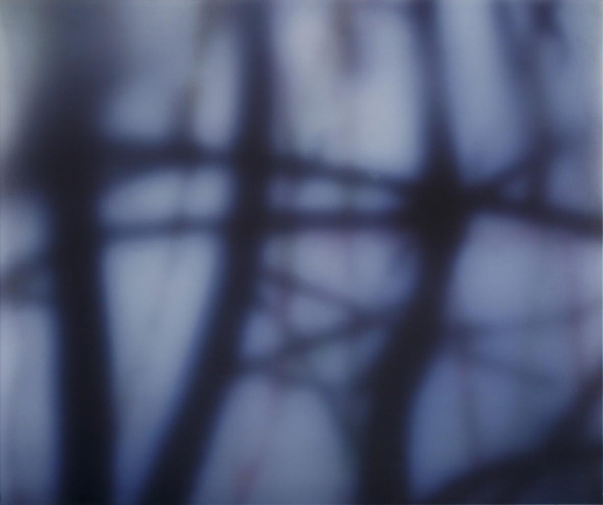 Strange Fruit 3, 2010-2011