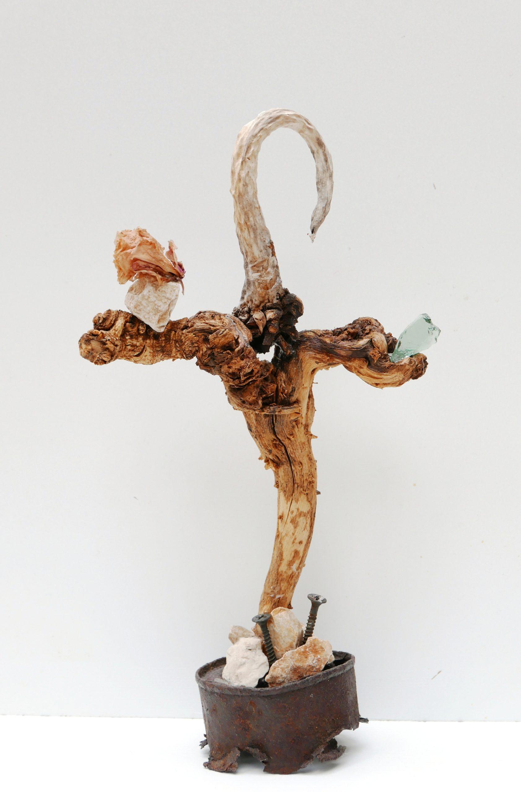 Croix de Peu, Didier Hays
