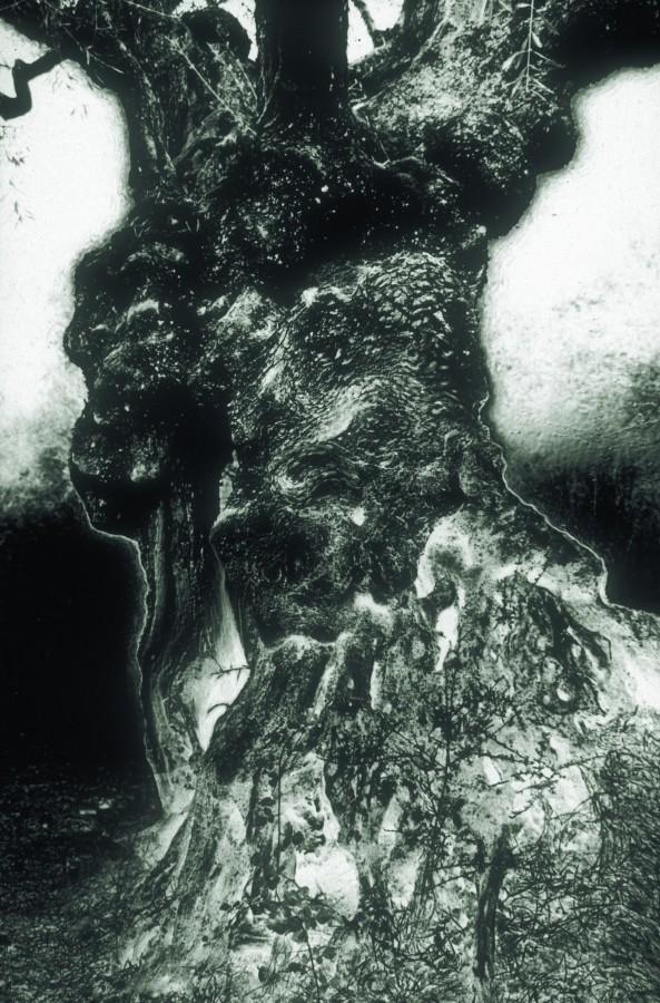 Ardre, 1997